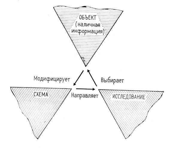 Перцептивный цикл
